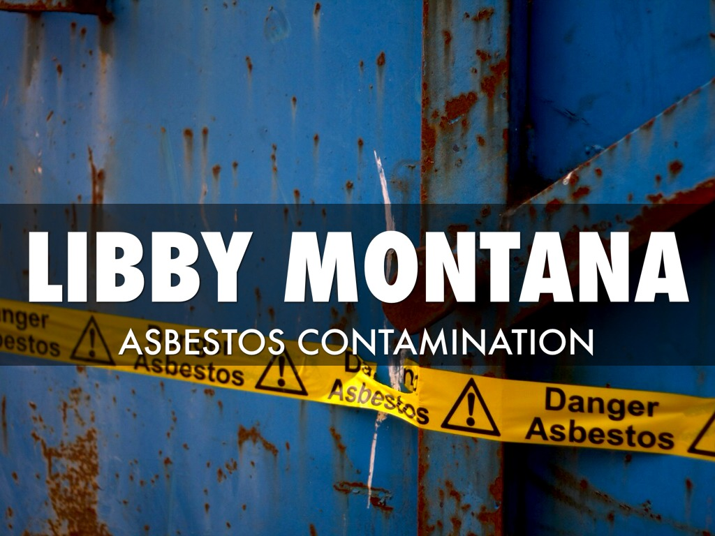 Libby Asbestos Disaster by Brandon Doody