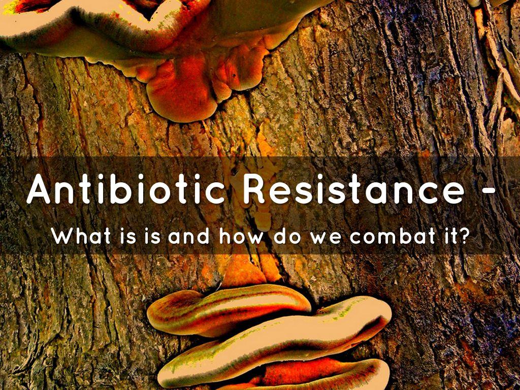 Antibiotic resistance ppt video online download.