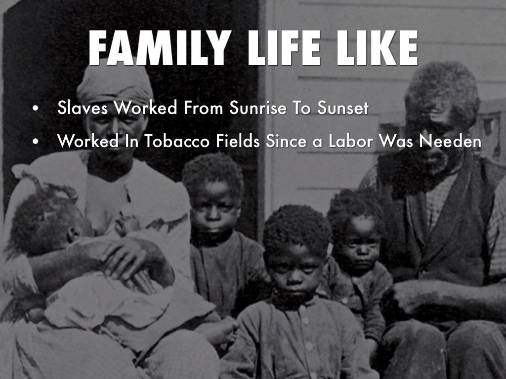 Daily Life Of A Slave by Jamaria Washington