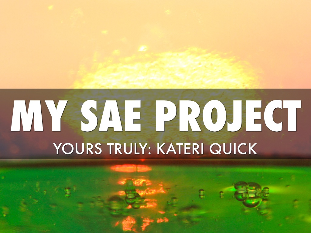sae projects