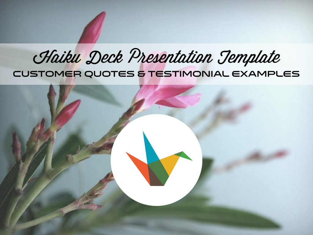 Customer Quotes & Testimonial Examples