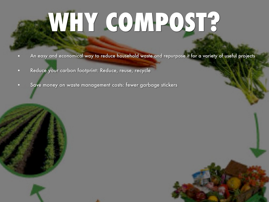 reduce your carbon footprints in easy