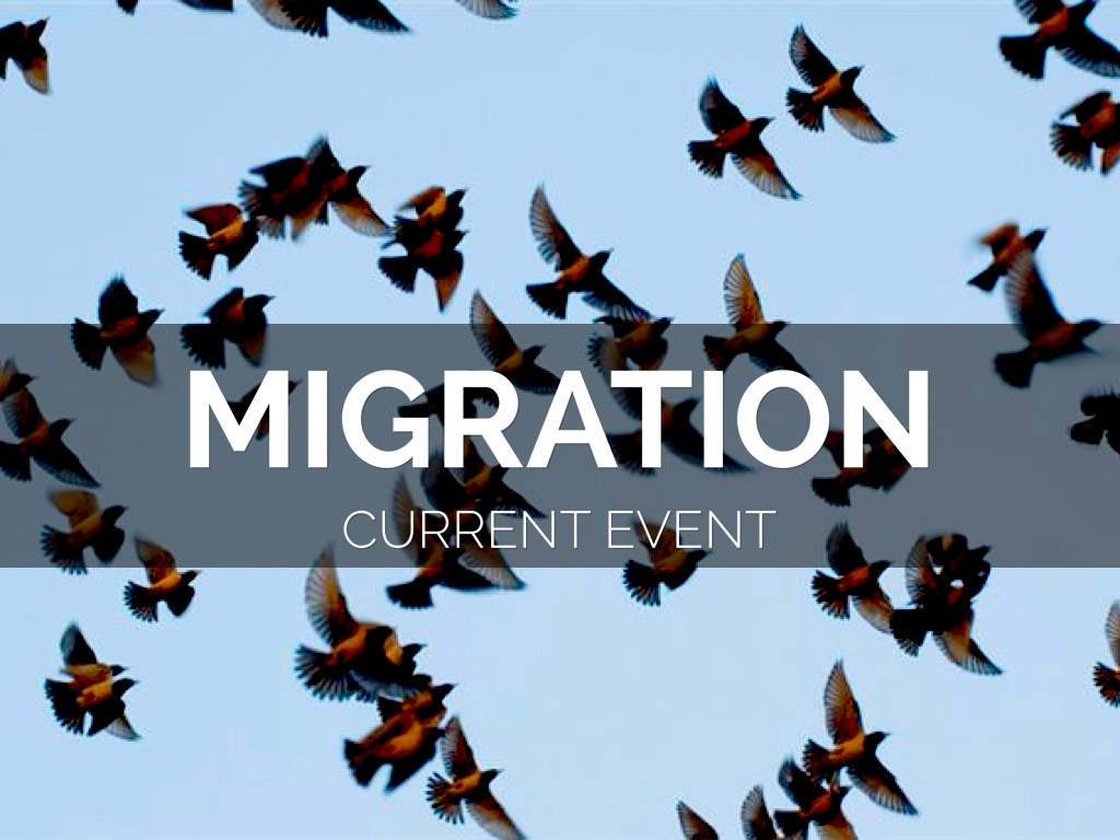 migration existing situation articles