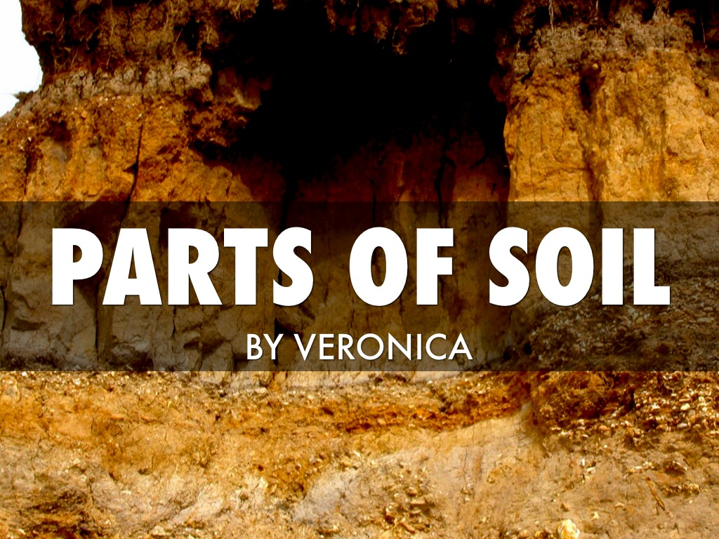 Parts of soil by lisa spory for 4 parts of soil