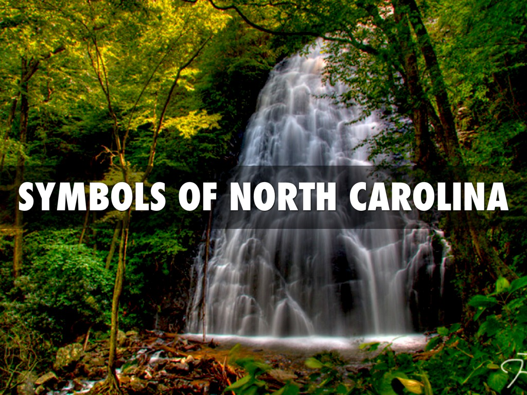 Symbols of north carolina by roxy grice buycottarizona