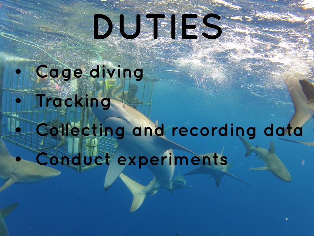Marine Biology By Devin Haines