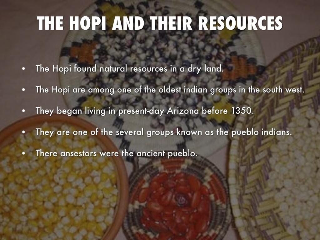 Southwest Indian Food