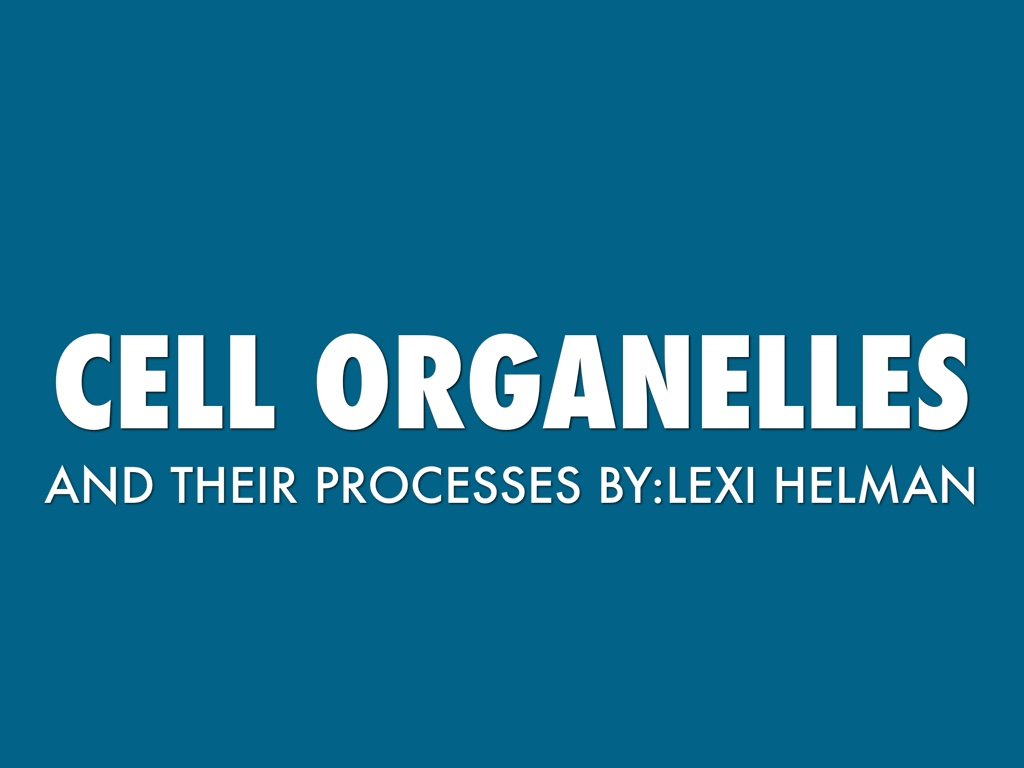 Cell Organelles and Their Processes