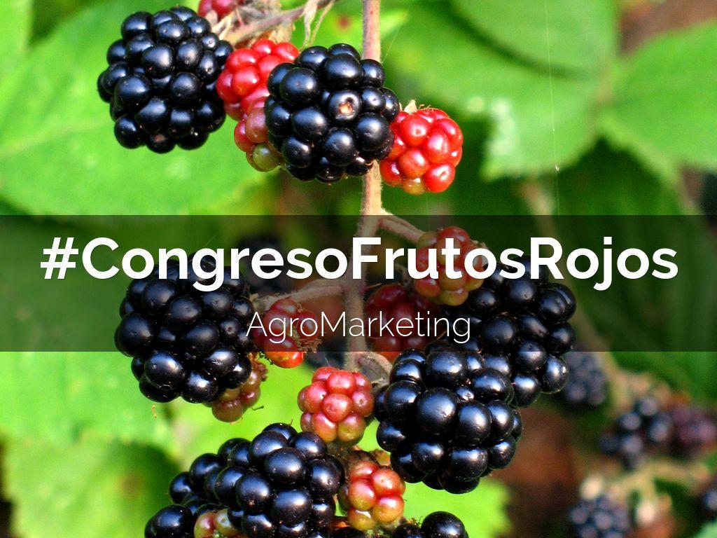 #CongresoFrutosRojos