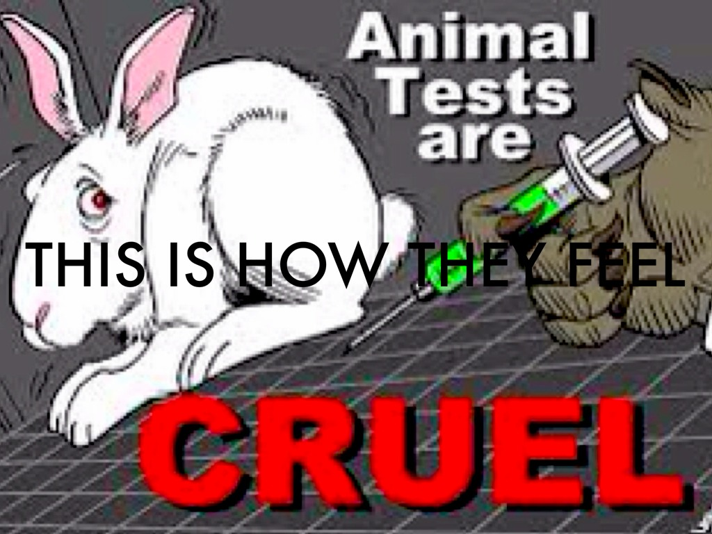 animal testing is morally wrong and should be banned by the government 题目: nowadays animal experiments are widely used to develop new medicines and to test the safety of other products some people argue that these experiments should be banned because it is morally wrong to cause animals to suffer, while others are in favour of them because of their benefits to humanity.