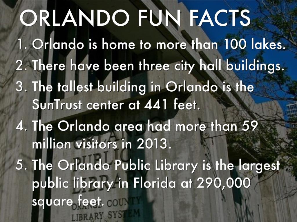 Orlando, Florida by natalia koval42