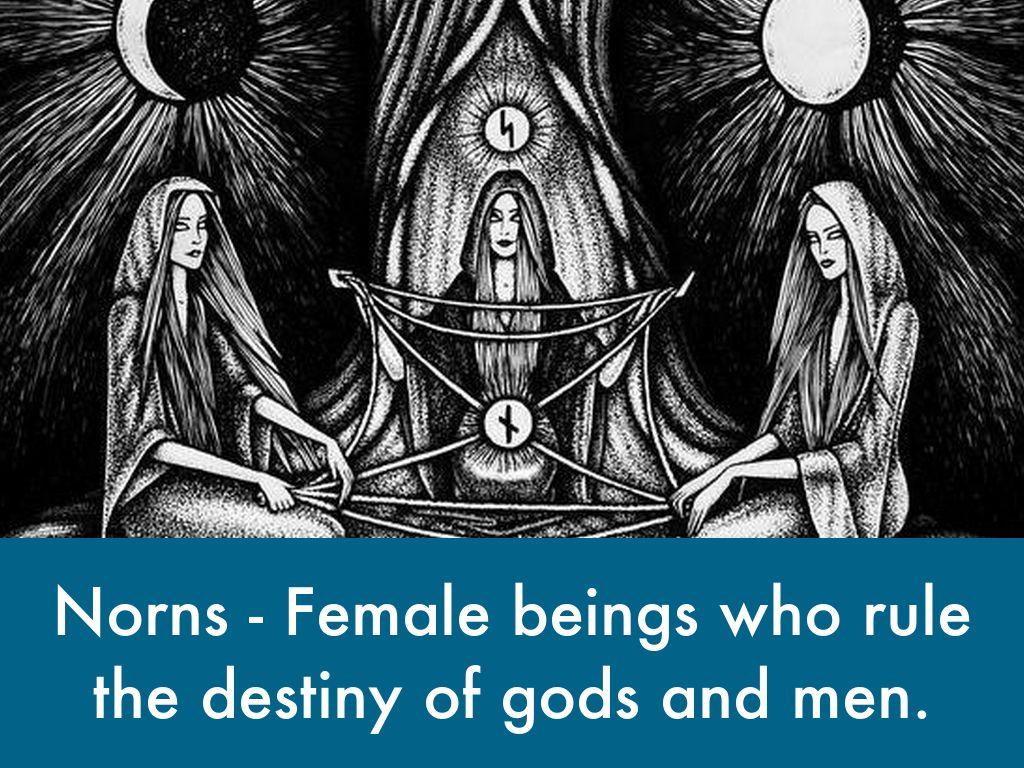 norse mythology by jenna davison