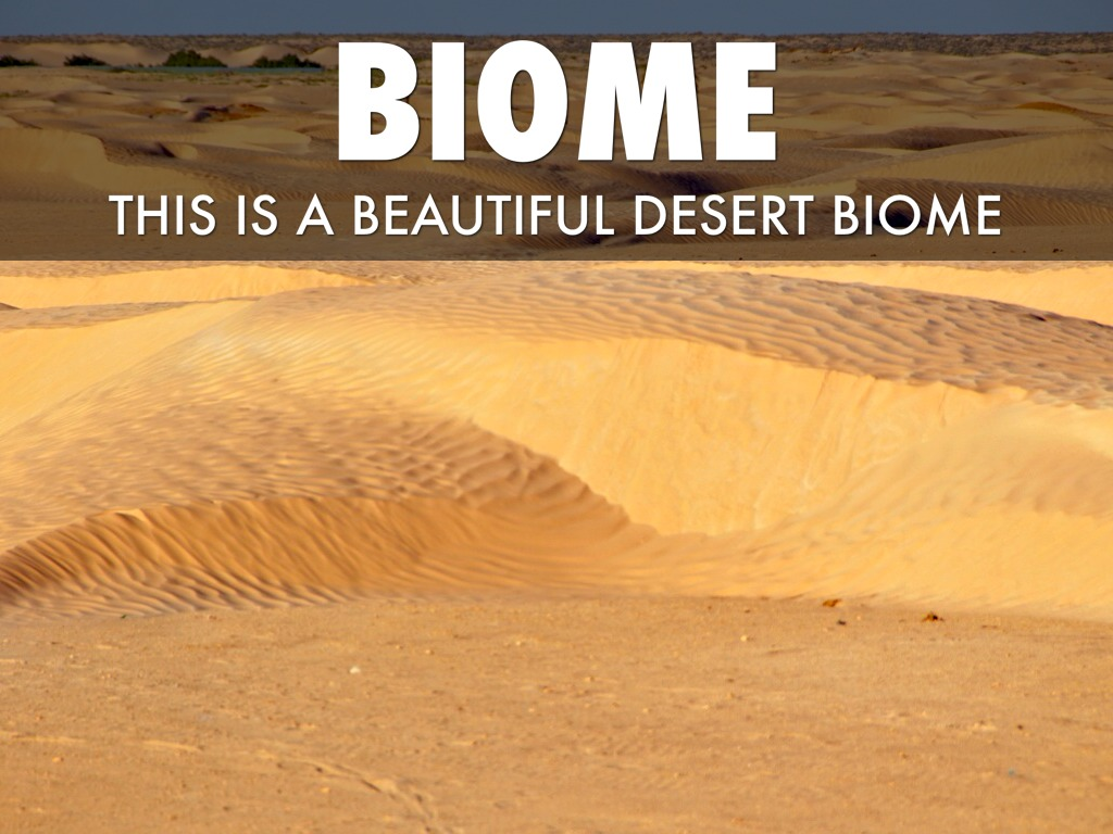 leaving certificate desert biome If you want a specific certificate that you don't find here then certificates for kids who are now become a preschooler and are leaving the.