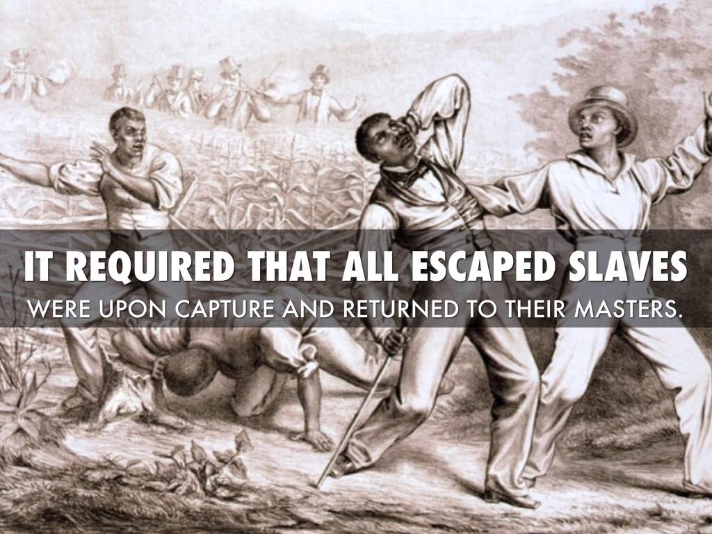 the tensions caused by slavery as the main cause for the civil war Some historians claim that the main cause of the civil war was the institution of slavery southern states needed the institution to help with their main source of economy agriculture northern states, however, were primarily manufacturing states and did not have as great of a need for slavery.