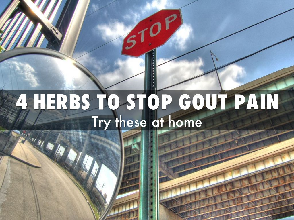 4 HERBS TO stop gout pain