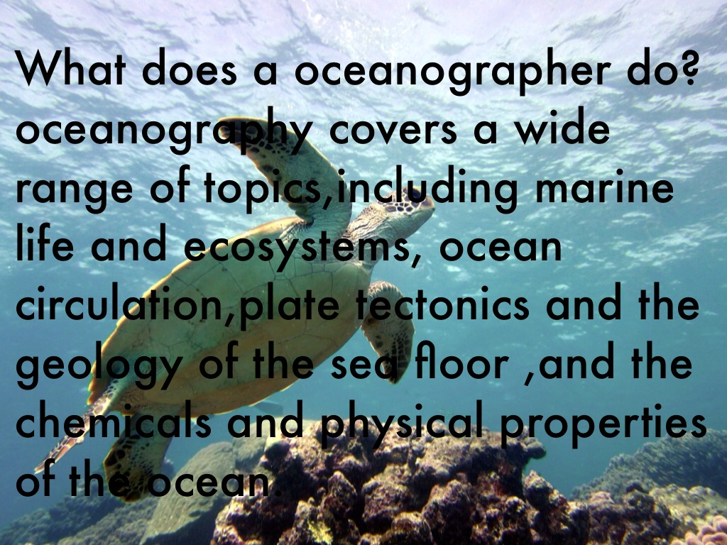What does an oceanologist do