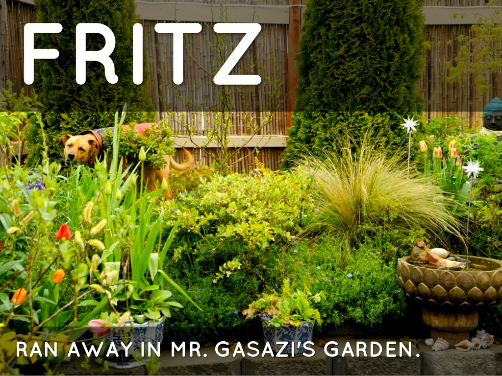 the garden of abdul gasazi by joliannroom402