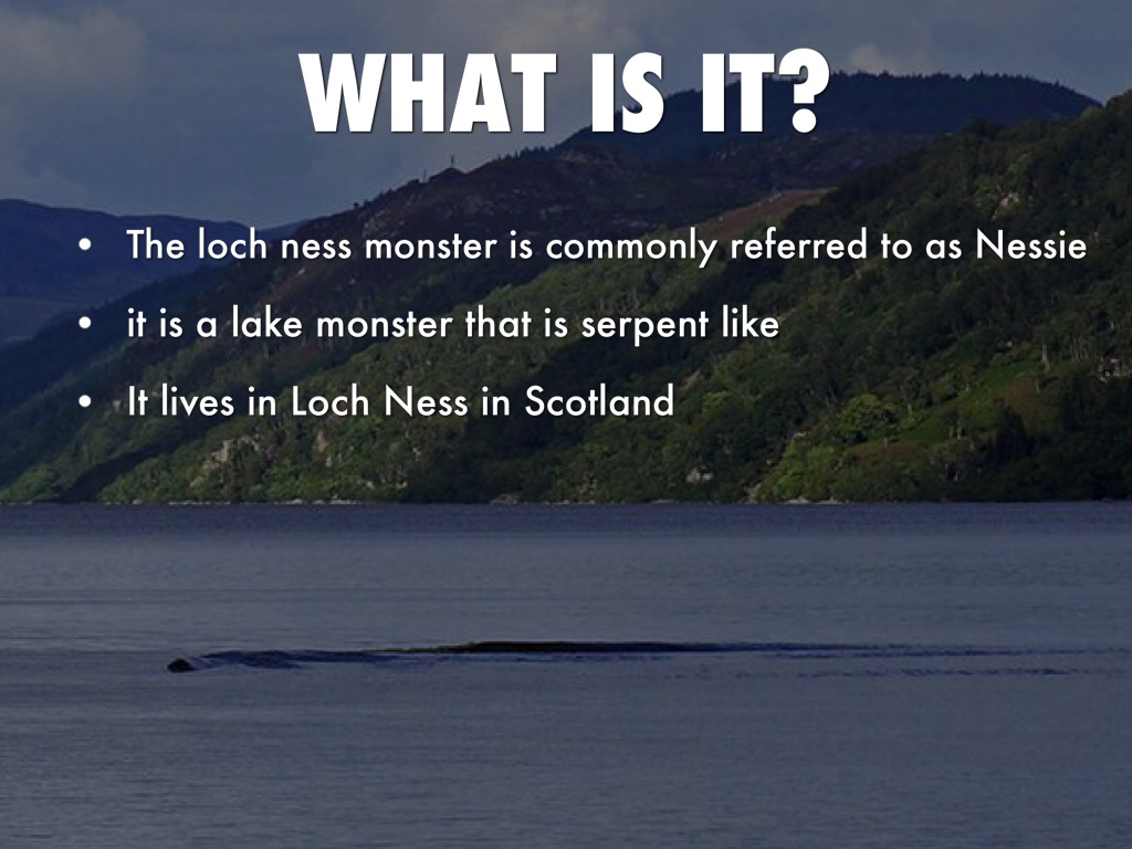 Loch Ness Monster by Sammi Radomski
