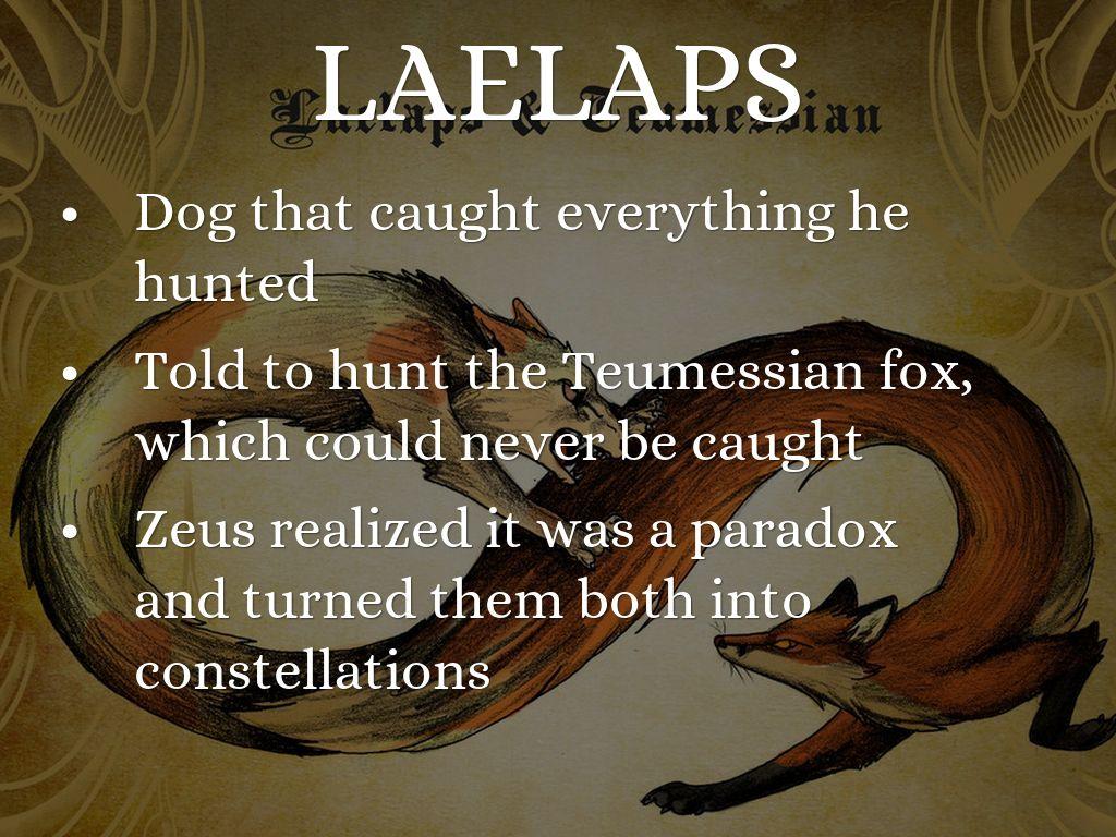 Teumessian fox greek mythology - photo#53