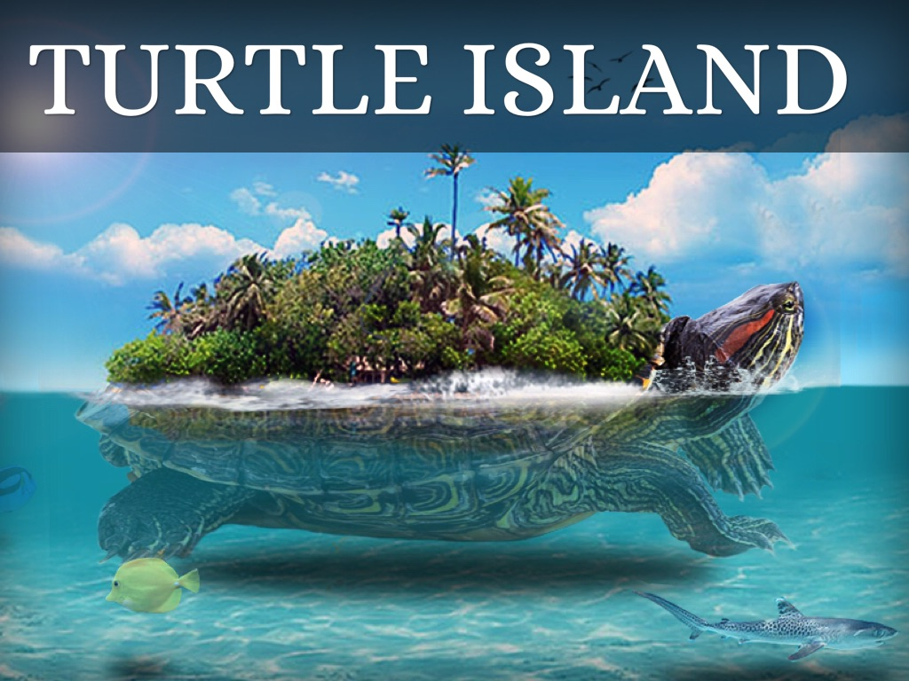 the world on a turtles back essay Free essays on the world on turtle s back get help with your writing 1 through 30.
