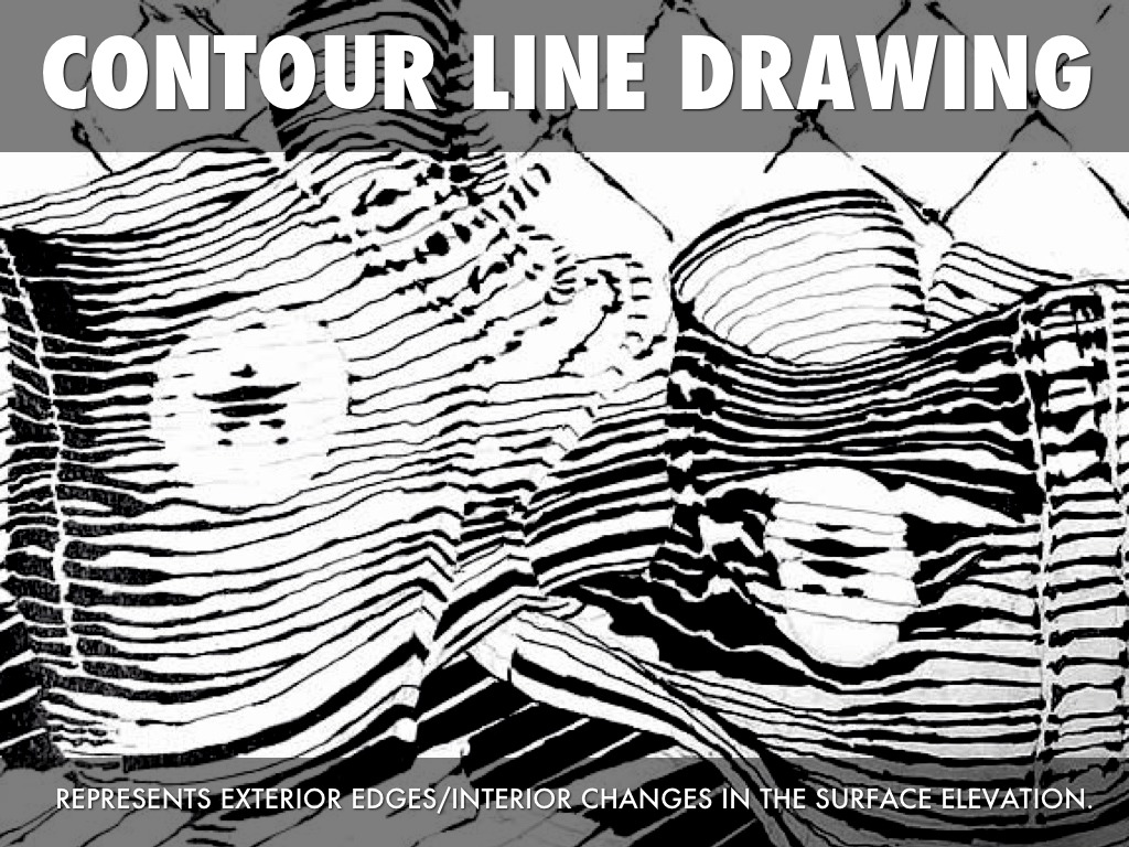 Contour Line Drawing Powerpoint : Lines by aspen reed
