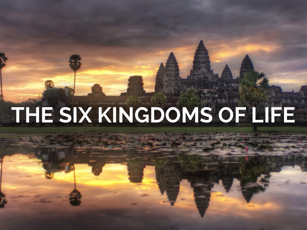 The Six Kingdoms of Life by Courtney Deaner