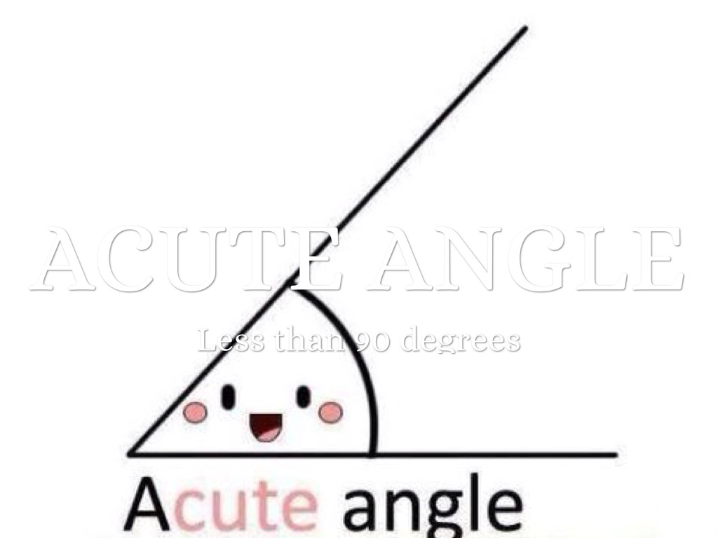 Acute angle by austin potter biocorpaavc Image collections