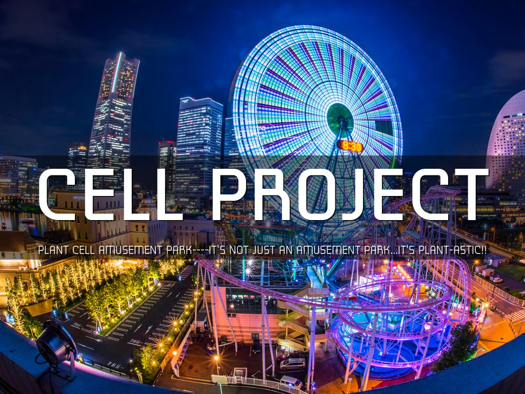 Cell Project By Sammie Kwan