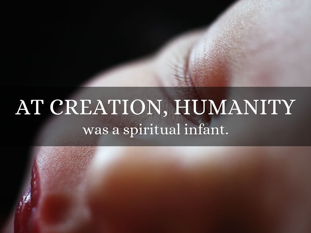 the creation of humanity God's purpose for all his creation 1:8-10 the apostle paul gives us a rare insight into gods' wonderful plan, not only for humanity but for all creation.