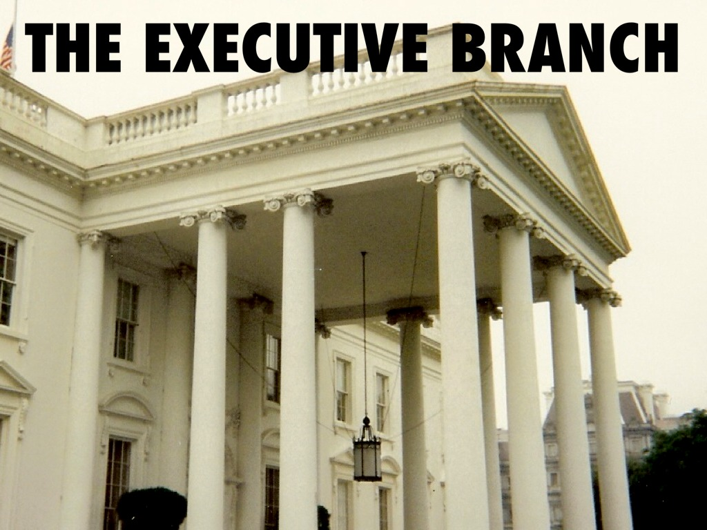 exutive branch The executive branch and the constitution the executive branch has undergone tremendous changes over the years, making it very different from what it was under george washington today's executive branch is much larger, more complex, and more powerful than it was when the united states was founded.