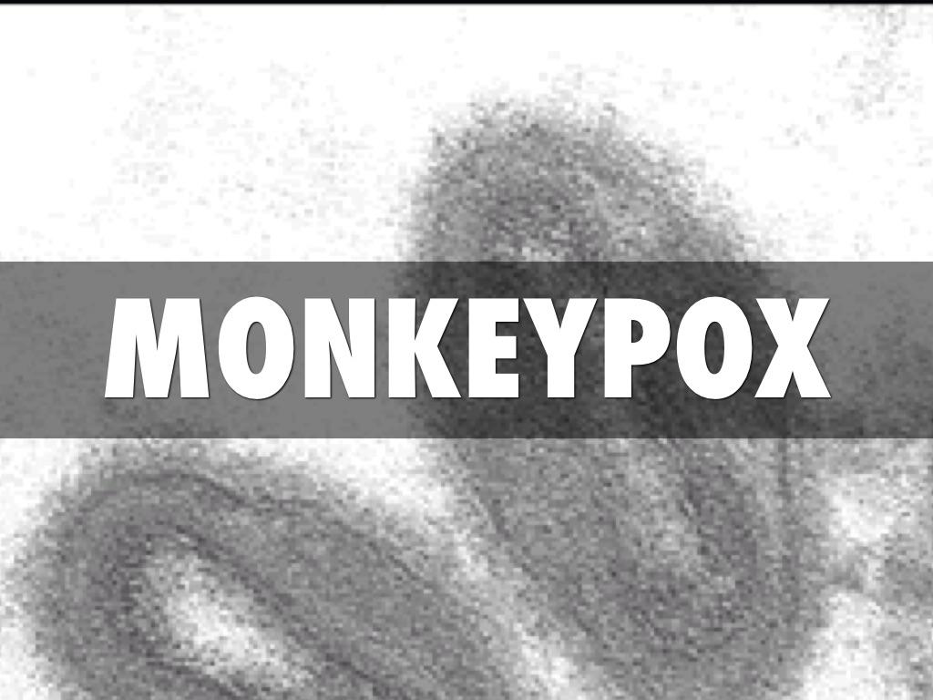 monkeypox - photo #17