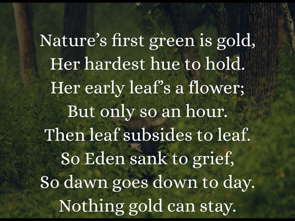 nothing gold can stay poem