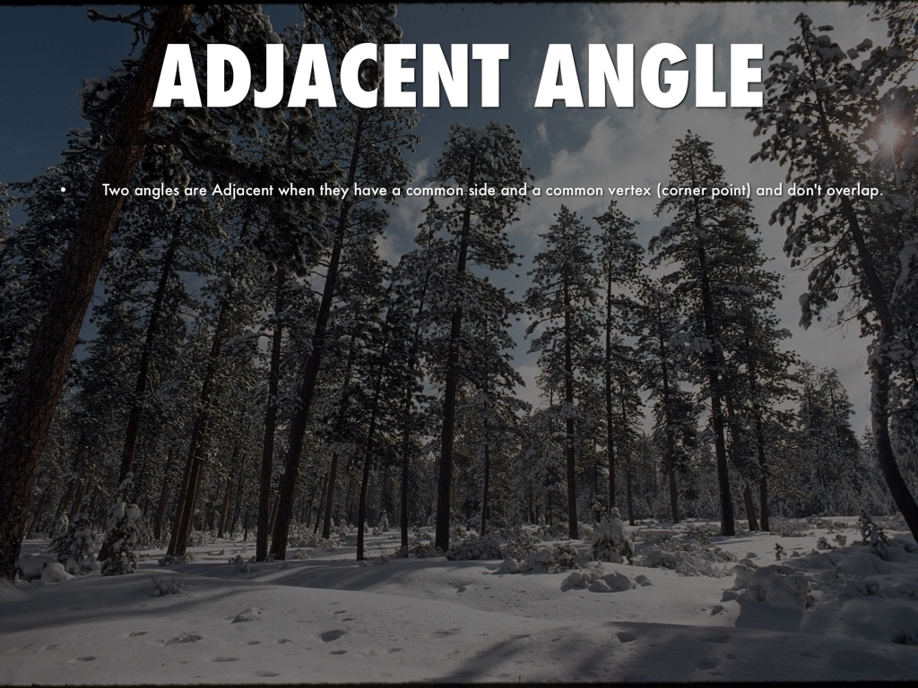 Adjacent Angles In Nature