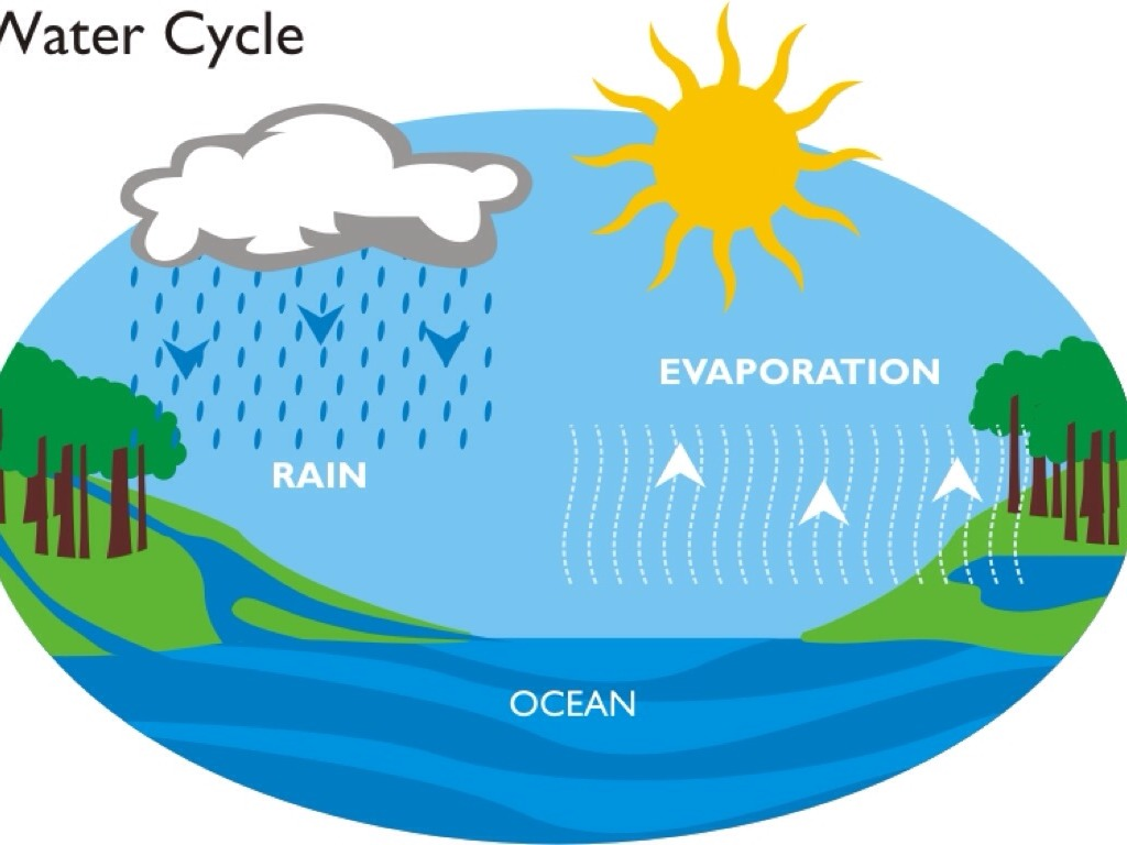 Water Cycle: Water Cycle By 013968