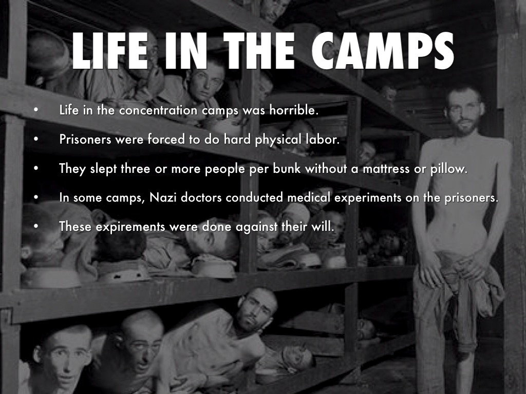 what kind of work did they do in concentration camps