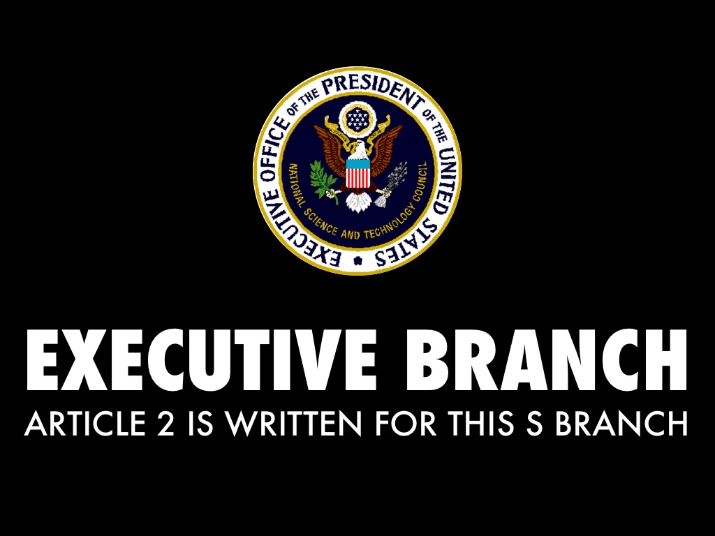 executive branch The executive branch includes the president of the united states, the vice president, and the cabinet, as well as about five million people in various agencies the president is the head of state in the nation.