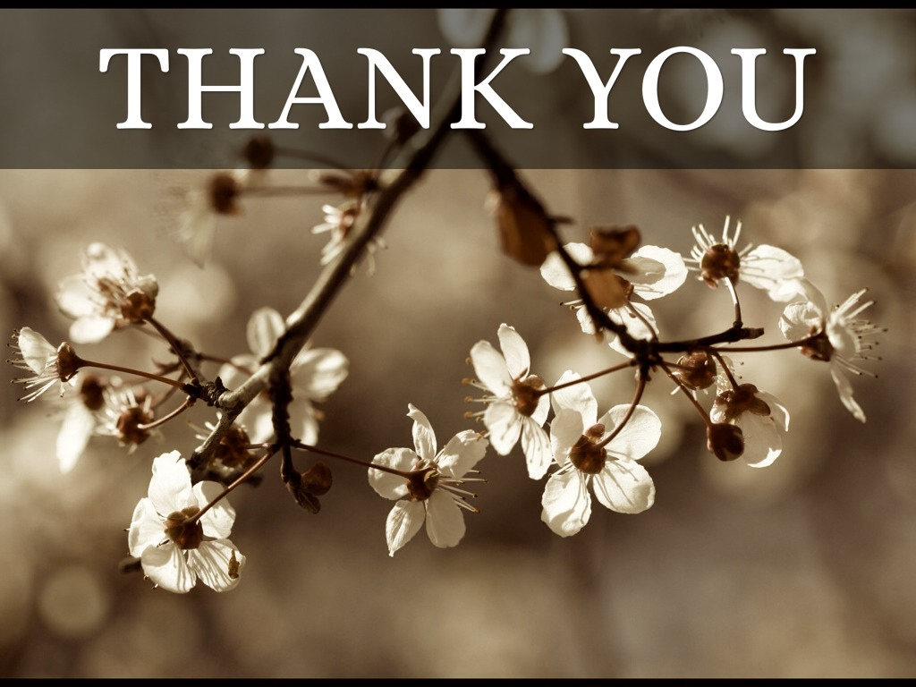 Thank You by Sue Hemsley