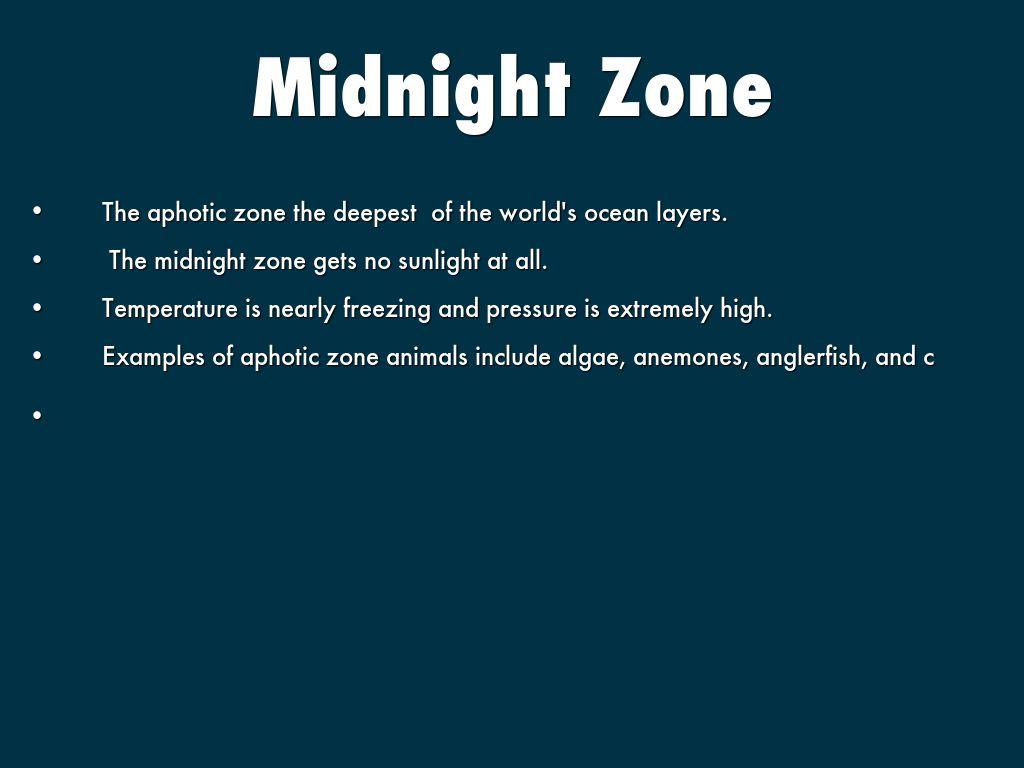 Midnight zone jellyfish