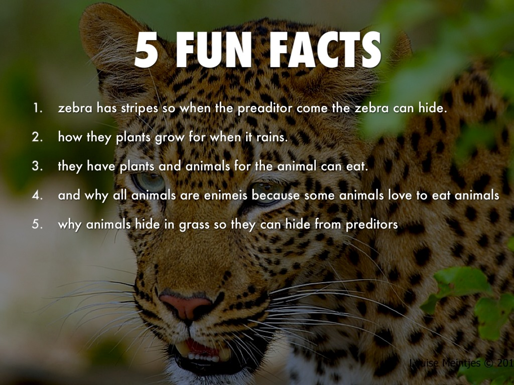 Savanna biome by keiaraparis for 5 facts about soil