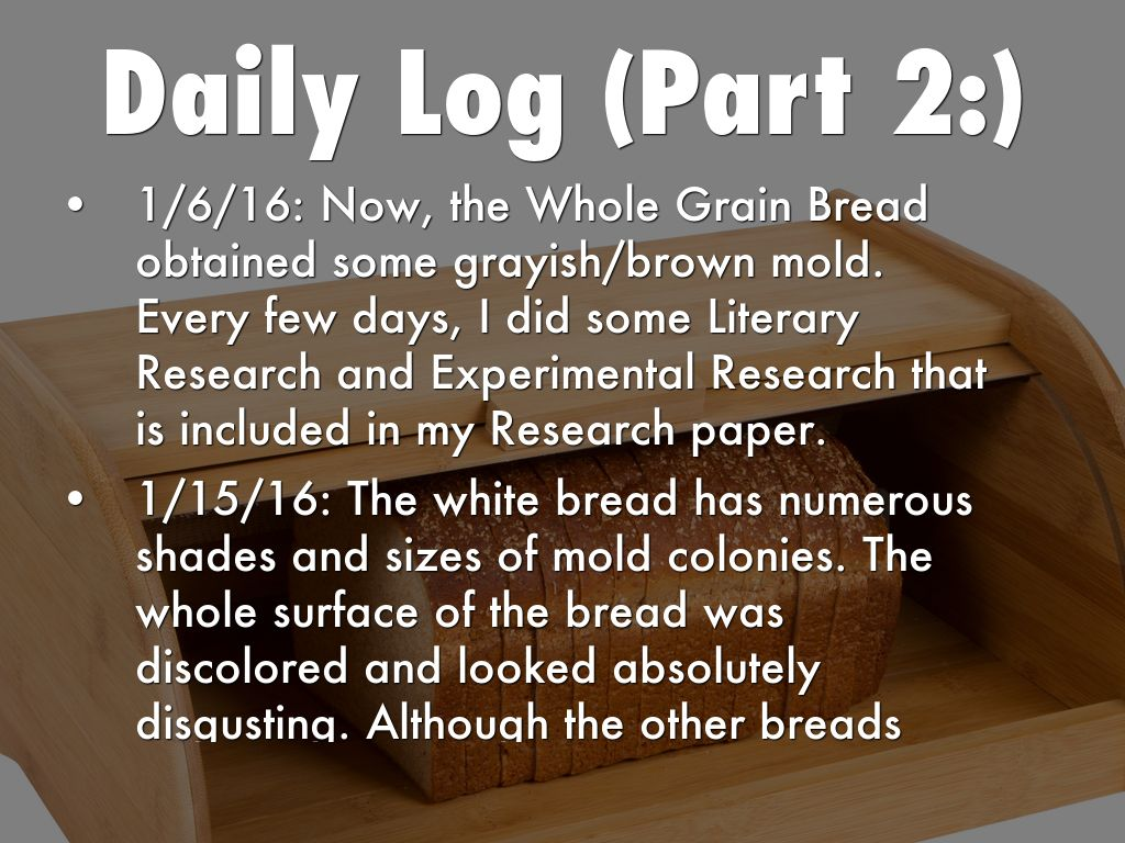 bread mold research paper Free bread papers, essays, and research papers my account your search returned over  bread molds grow quickly at a temperature between 15°c to 30°c molds in .
