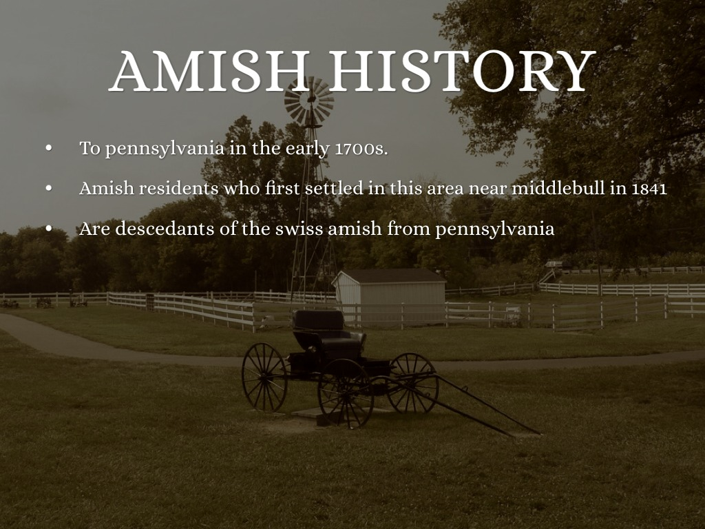 the amish educational exemption The supreme court's religious parenting precedent  educational regime on due  showing necessary to secure an amish-type exemption.