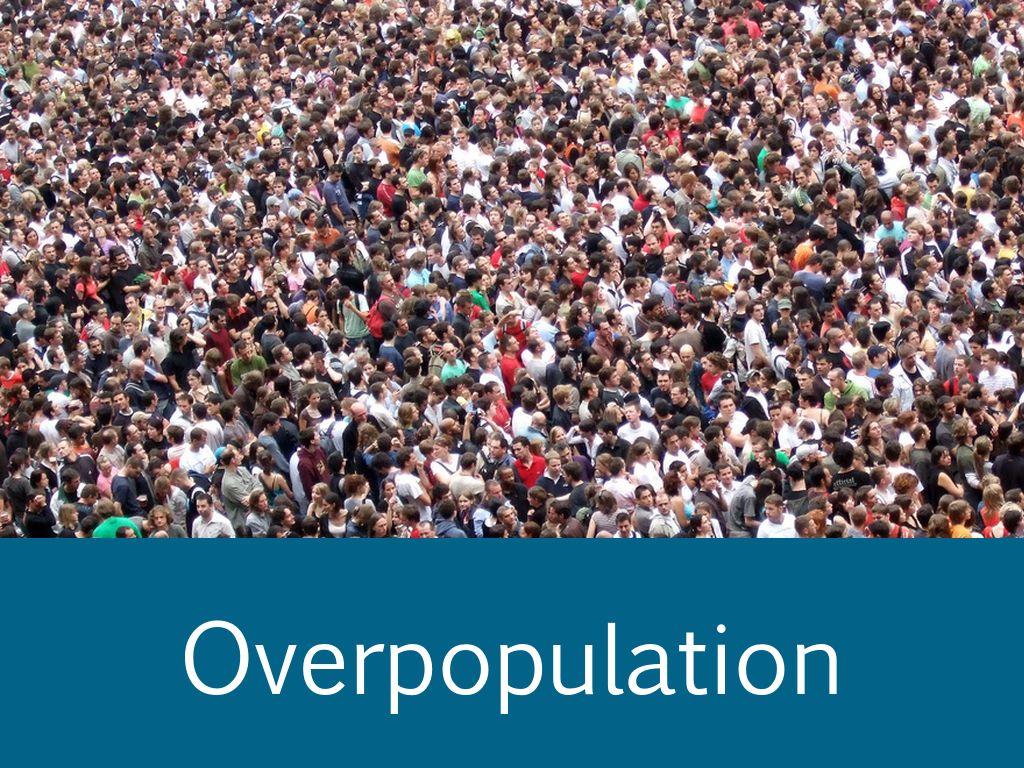 overpopulation a problem