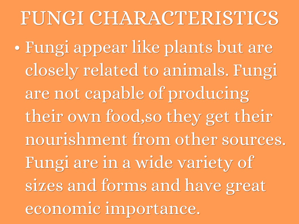 economic importance of funghi