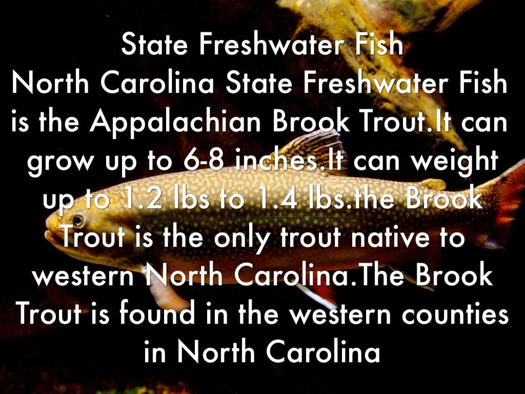 Freshwater fish nc - 3