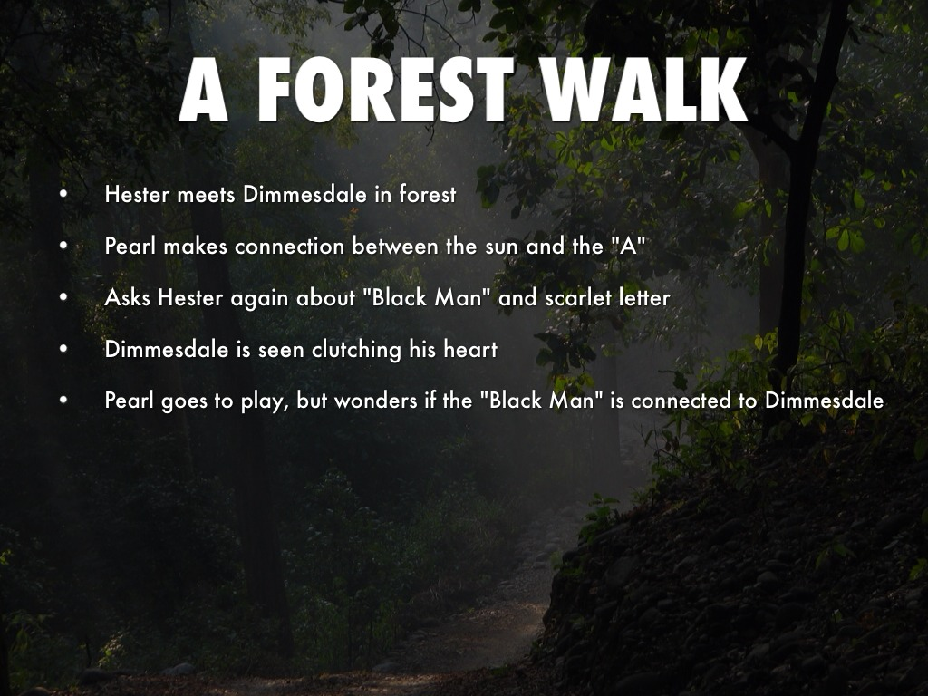 Significance Of Forest In Scarlet Letter