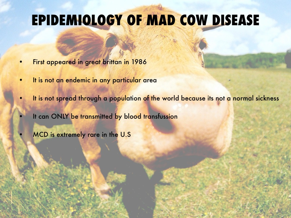 how to tell if a cow has mad cow disease