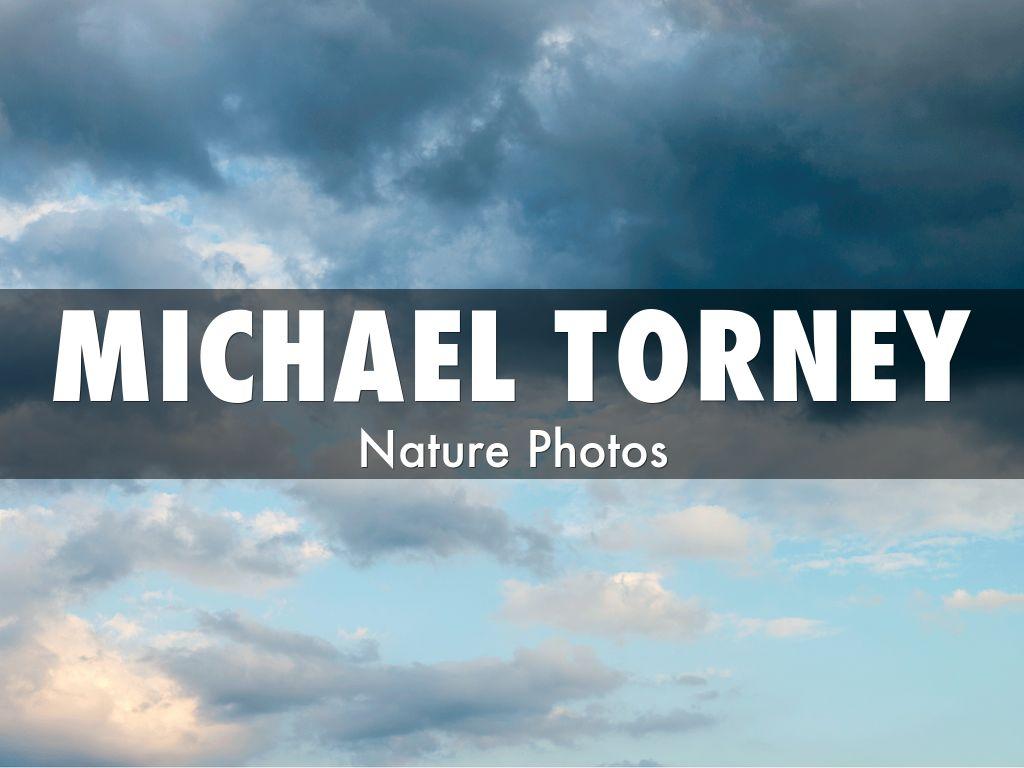 Michael Torney - Nature Photos