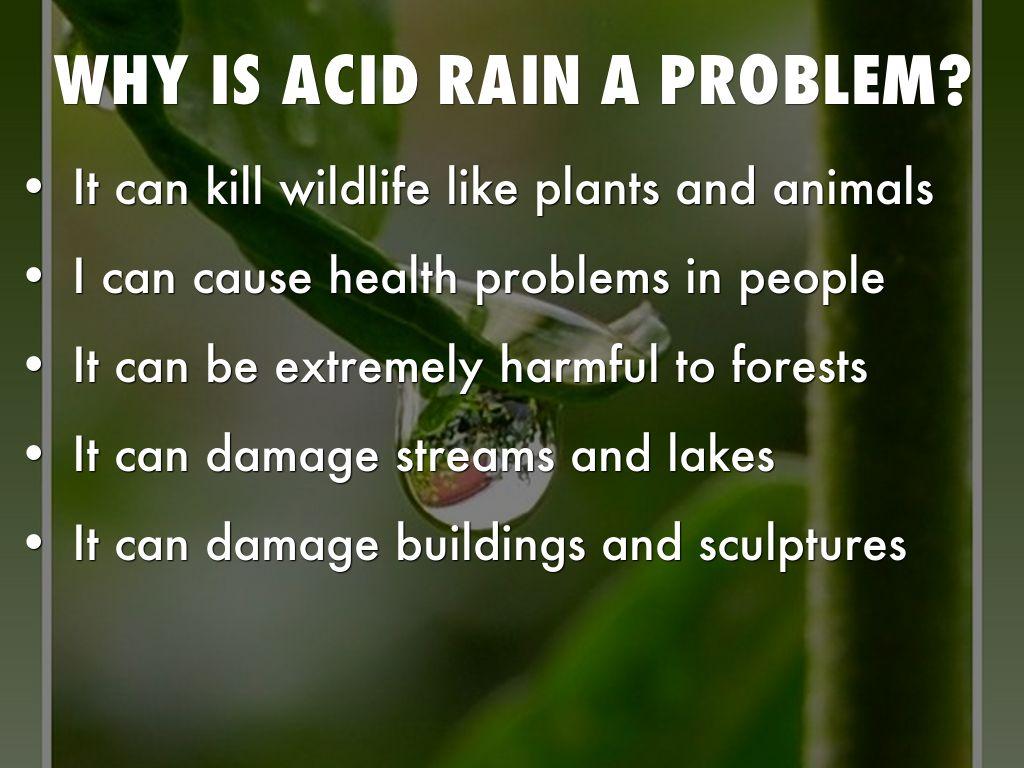 Acid rain demo - YouTube