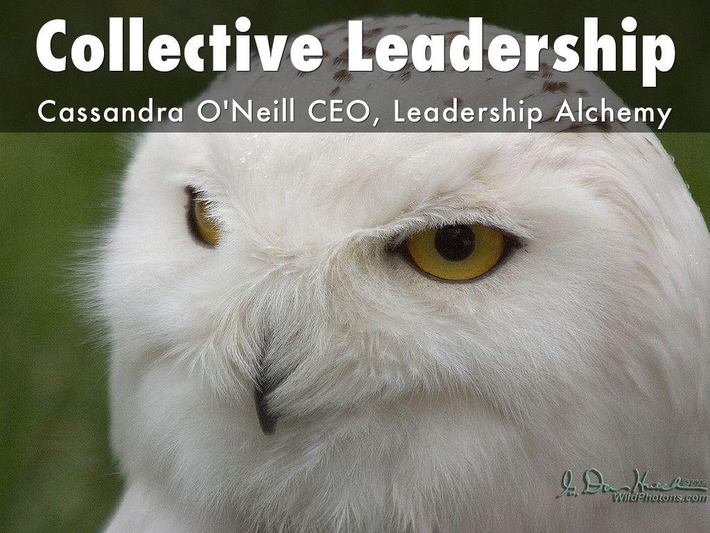 Collective Leadership Slides Leadership Alchemy 的副本