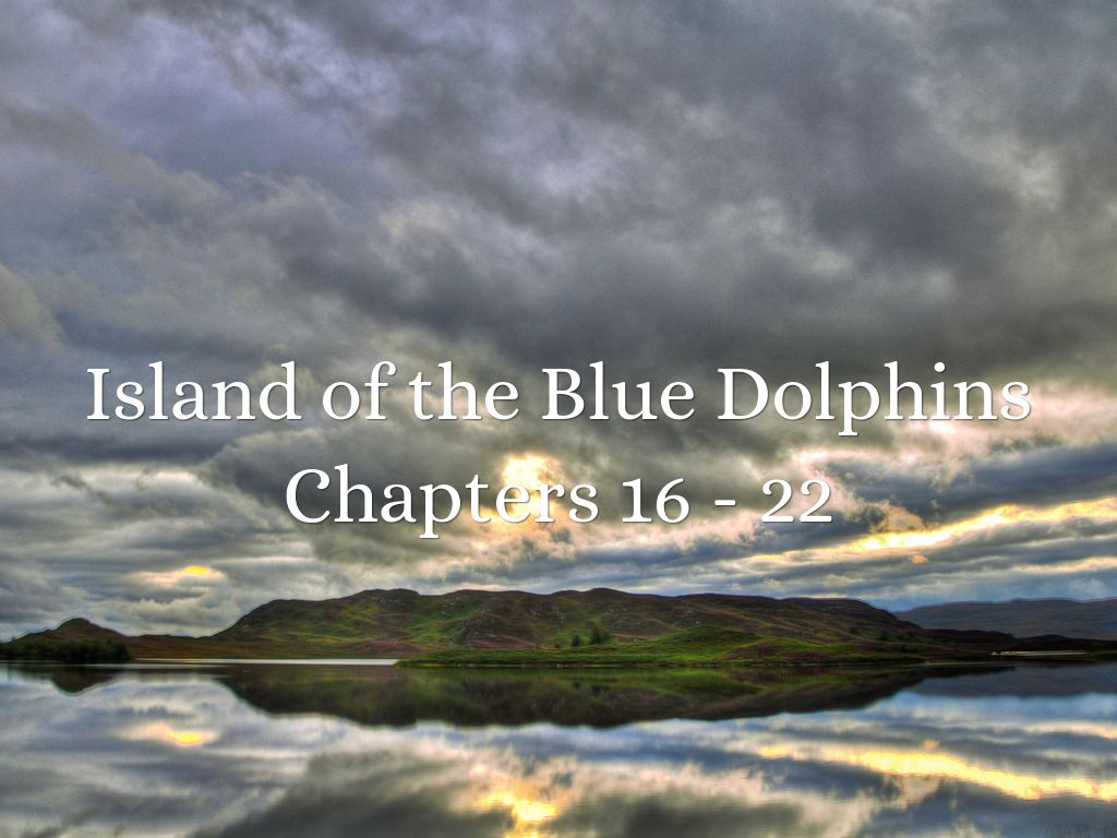 island of the blue dolphin essay questions Island of the blue dolphins message board downloadable/printable version of this monkeynote this study guide is currently being revised and reformatted.